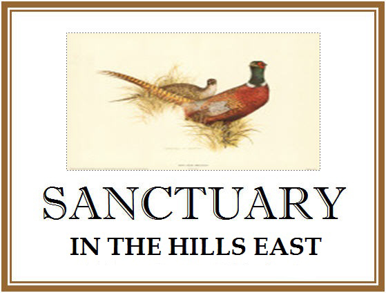 Sanctuary in the Hills East Logo